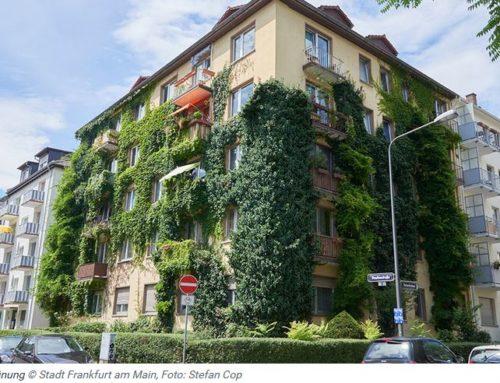 Frankfurt frischt auf – 50 % Klimabonus. Hessischer Klimapreis für Frankfurt
